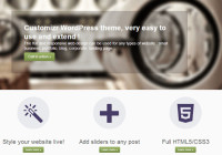 WordPress Theme Review of Customizr a 5 Star Theme
